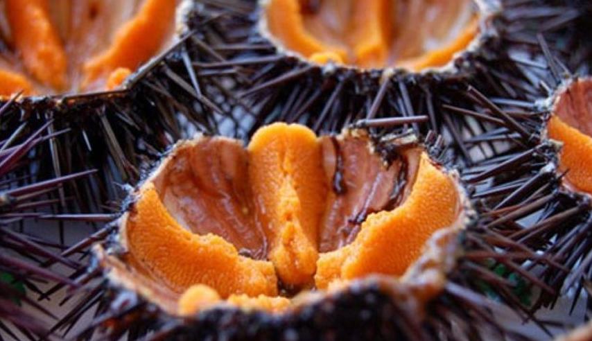 7 странных блюд со всего мира